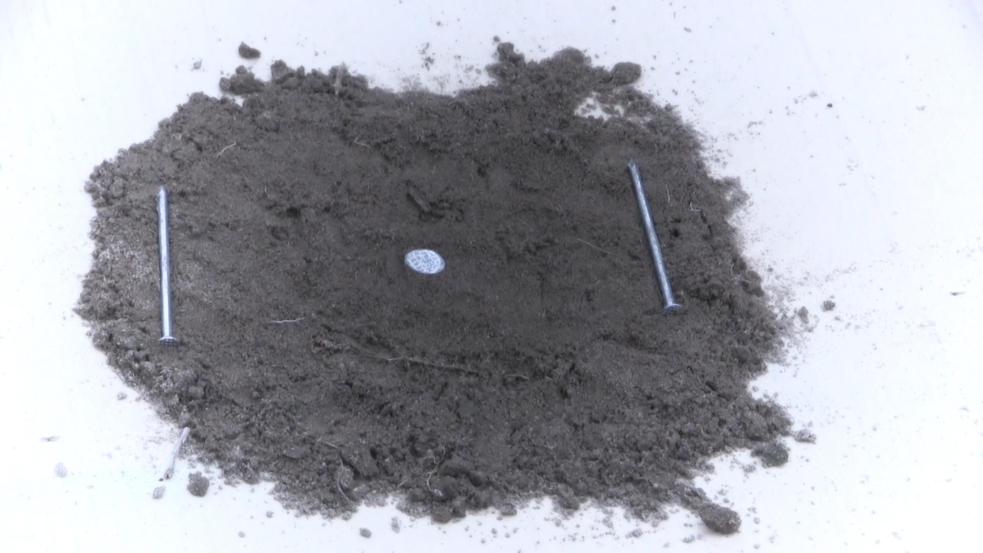 Монета- чешуйка - тест. Металлоискатель 4WD