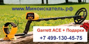 Металлоискатель ACE 250