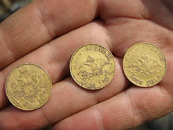 Золотые монетки. Распаханный клад.